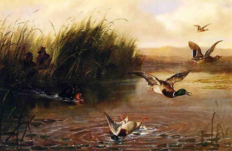 ArthurFitzwilliamTait-DuckShooting1