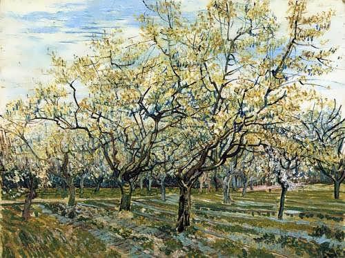 Gogh-TheWhiteOrchard