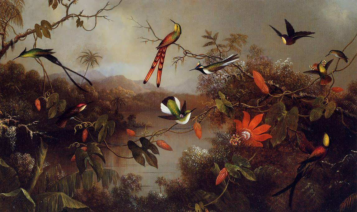 MartinJohnsonHeade-TropicalLandscapewithTenHummingbirds1