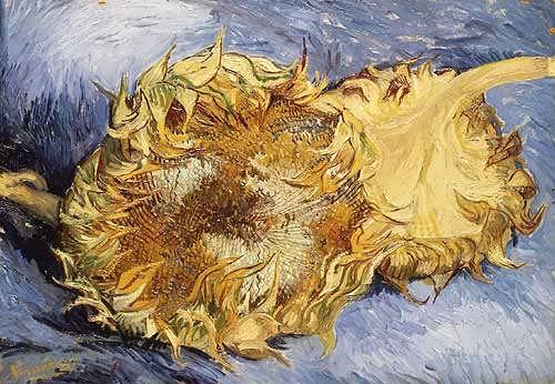 Van_Gogh_Vincent_Sunflowers_1887